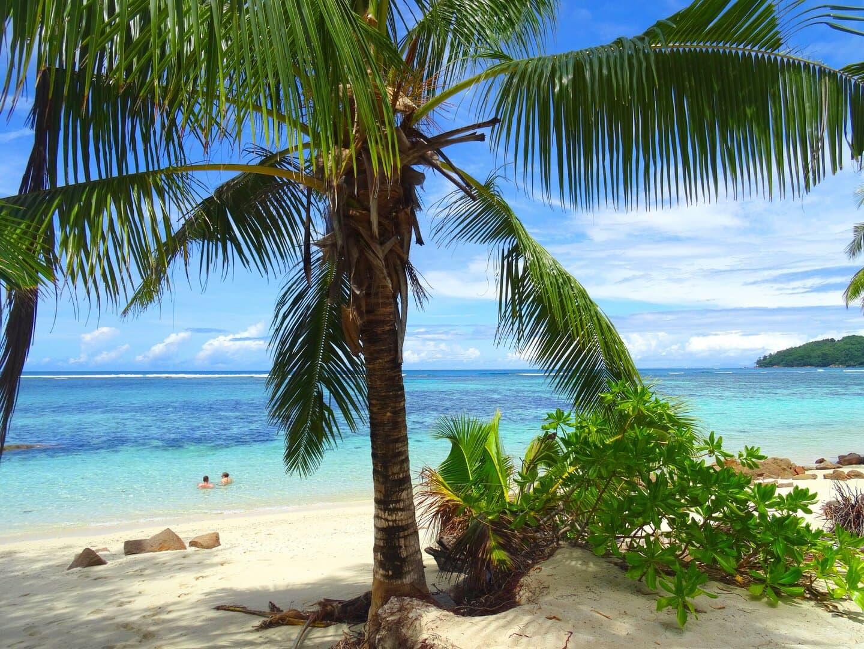 Seychelles szigetek nyitás beutazási feltételek újranyit 2021