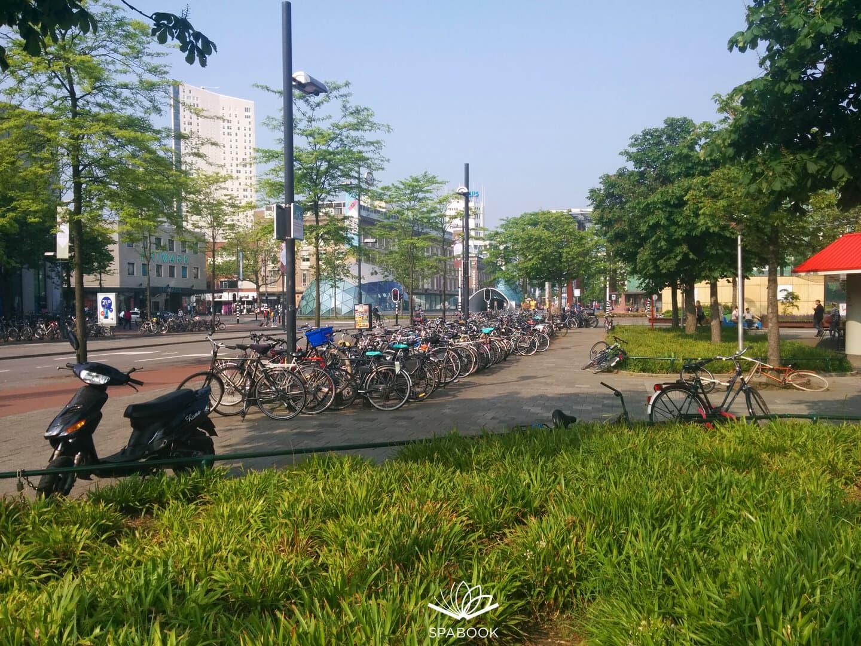 Hollandia beutazás teszt karantén szabadon